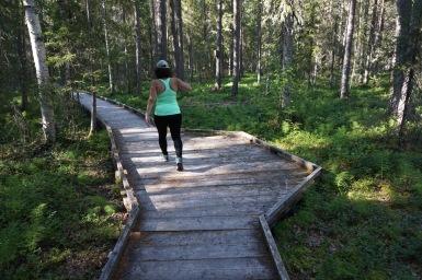 Akár kerekesszékkel is, Könkäänsaari, Rovaniemi