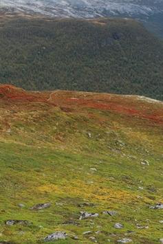 Aurlandsfjellet 8