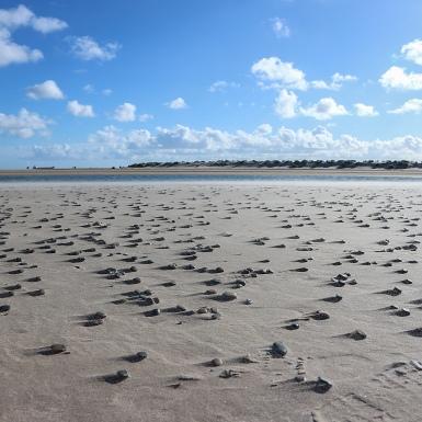 kő és homok