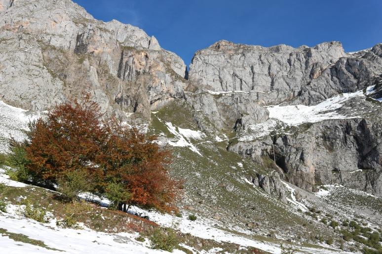 Fuente Dé, Parque Nacional de Los Picos de Europa