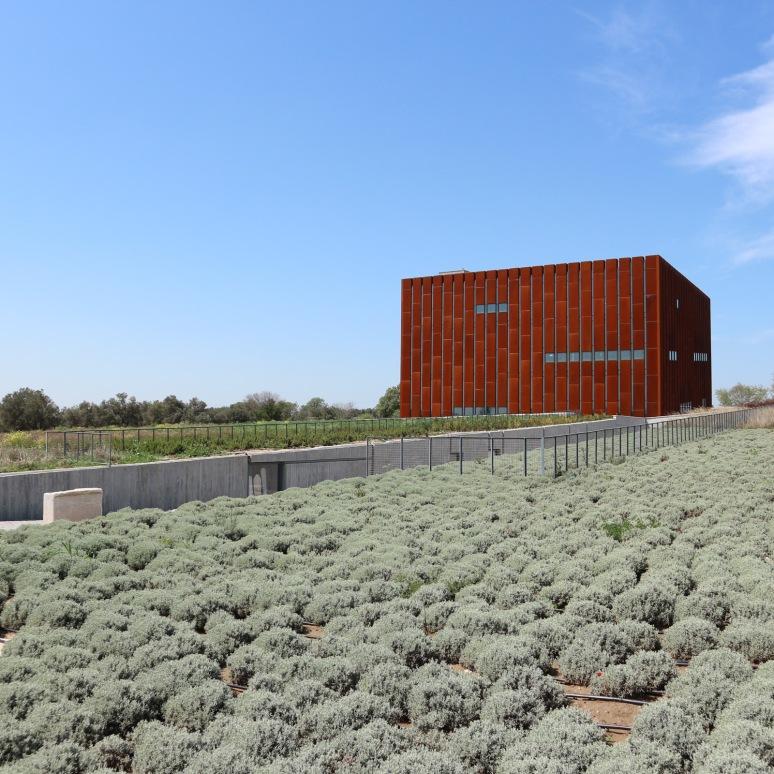 Trója múzeum